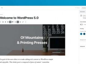 "WordPress 5.0""Bebo""正式发布,新编辑器来了!"