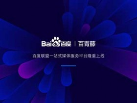 """百度联盟推出一站式媒体服务平台""""百青藤"""""""