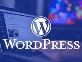 禁止 WordPress 评论存储IP地址