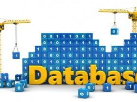 Oracle大势已去,国产数据库的春天来了