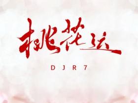 抖音热歌歌词:桃花运 (DJR7版) - R7